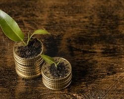 high-angle-two-stacks-coins-with-plants-copy-space